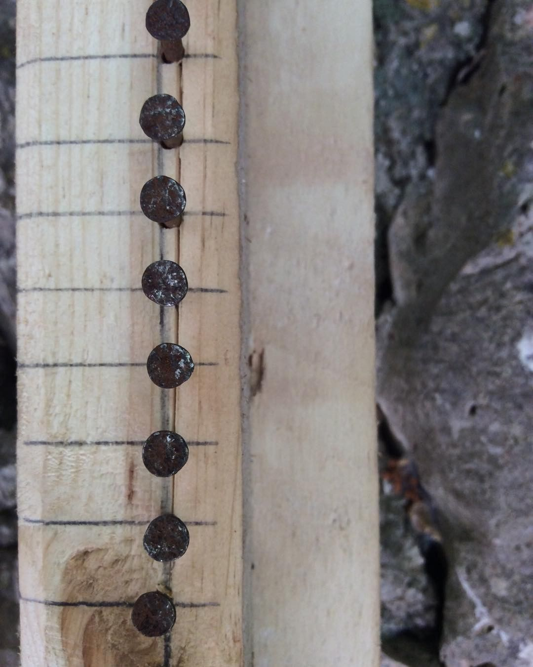 seabed-penelope-kouvara-fleves-project-tidal-flow--art-weaving-8